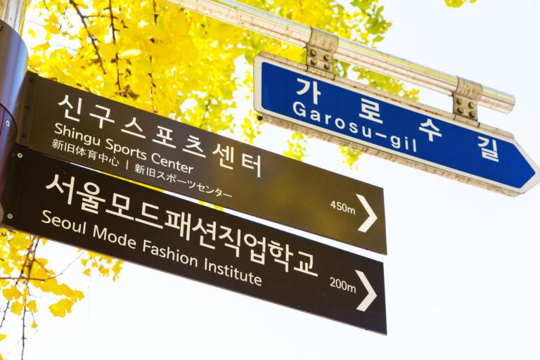 首都首尔调查