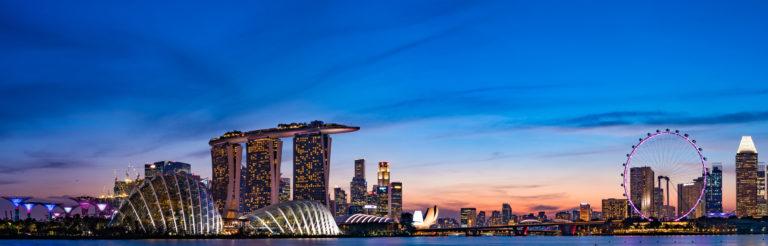 新加坡市场调查