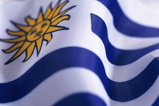 乌拉圭调查